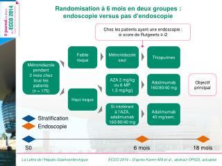 Randomisation à 6 mois en deux groupes :  endoscopie versus pas d'endoscopie