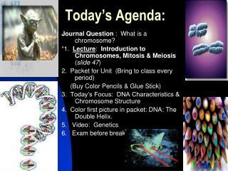 Today s Agenda: