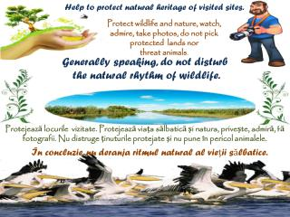 Help to protect natural heritage of visited sites.