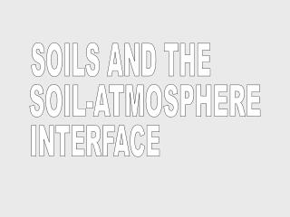 SOILS AND THE