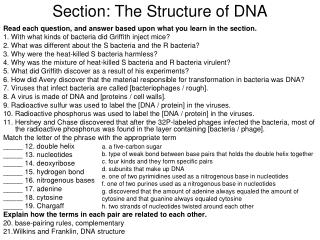 Section: The Structure of DNA