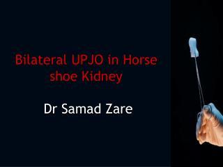 Bilateral UPJO in Horse shoe Kidney Dr  Samad Zare