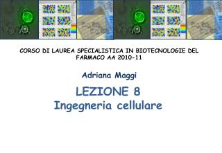 LEZIONE 8 Ingegneria cellulare