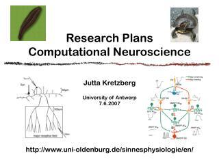 Research Plans  Computational Neuroscience