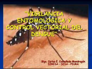 """""""VIGILANCIA ENTOMOLOGICA Y  CONTROL VECTORIAL DEL DENGUE"""""""
