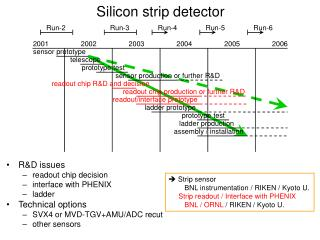 Silicon strip detector