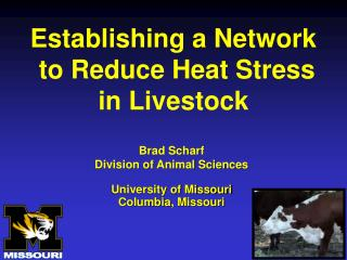 Establishing a Network  to Reduce Heat Stress  in Livestock
