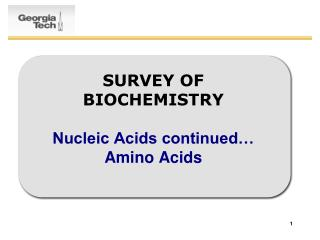 SURVEY OF BIOCHEMISTRY Nucleic Acids continued… Amino Acids