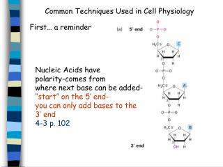 Common Techniques Used in Cell Physiology