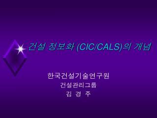 건설 정보화  (CIC/CALS) 의 개념