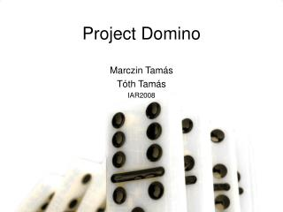 Project Domino