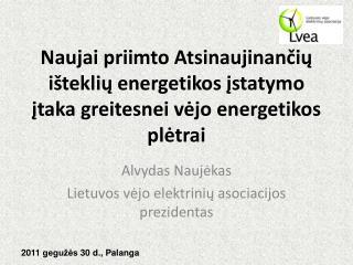 Alvydas Naujėkas Lietuvos vėjo elektrinių asociacijos prezidentas