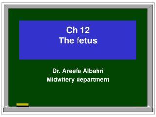 Ch 12 The fetus