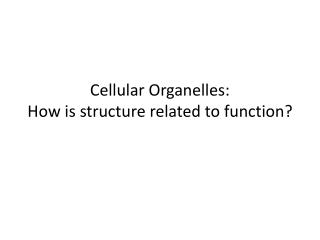 Cellular Organelles: How is structure related to function?