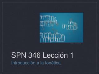 SPN 346 Lección 1