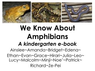We Know About Amphibians A kindergarten e-book