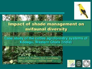Impact of shade management on avifaunal diversity