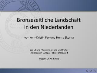 Bronzezeitliche Landschaft  in den Niederlanden
