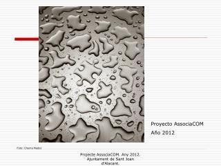Proyecto AssociaCOM Año 2012