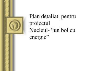 """Plan detaliat  pentru proiectul Nucleul- """"un bol cu energie"""""""