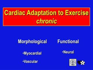 Cardiac Adaptation to Exercise chronic