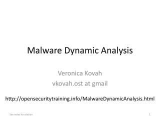 Malware Dynamic Analysis