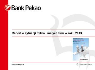 Raport o sytuacji mikro i małych firm w roku 2013