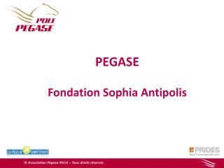 PEGASE  Fondation Sophia Antipolis