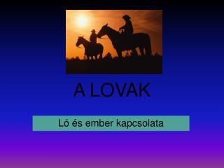 A LOVAK