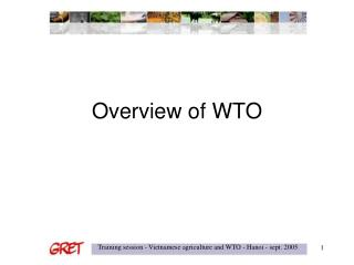 Overview of WTO