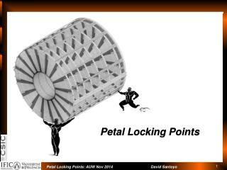 Petal Locking Points