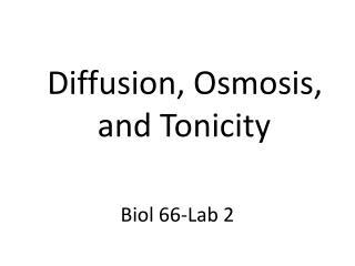 Biol 66-Lab 2
