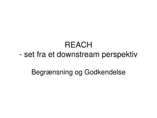 REACH - set fra et downstream perspektiv