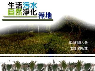 崑山科技大學 老師  蕭明謙