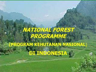 NATIONAL FOREST PROGRAMME (PROGRAM KEHUTANAN NASIONAL ) DI INDONESIA