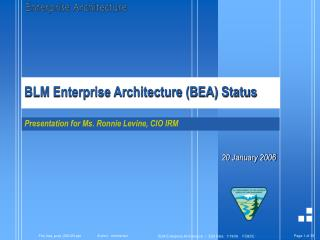 BLM Enterprise Architecture (BEA) Status