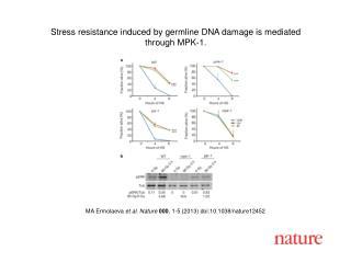 MA  Ermolaeva et al. Nature  000 , 1-5 (2013) doi:10.1038/nature 12452