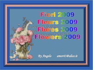 Fiori2009