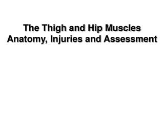 The Thigh and Hip Muscles Anatomy, Injuries and Assessment