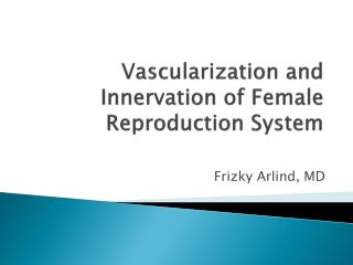 Vascularization and Innervation of Female Reproduction System