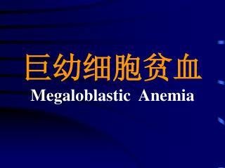 巨幼细胞贫血 Megaloblastic  Anemia