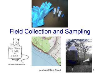 Field Collection and Sampling