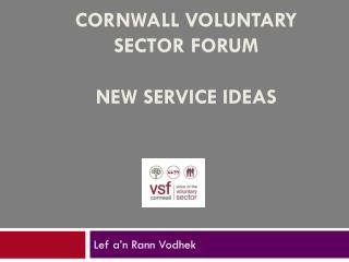 Cornwall voluntary  sector forum  new service ideas