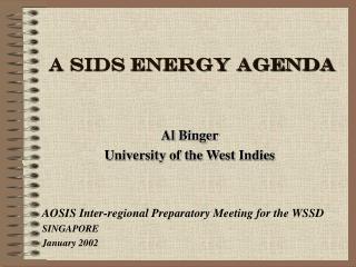A SIDS ENERGY AGENDA