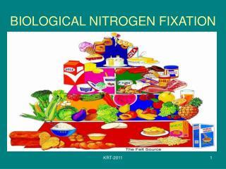 BIOLOGICAL NITROGEN FIXATION