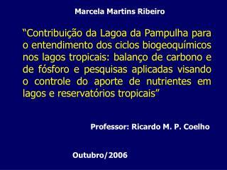 Marcela Martins Ribeiro