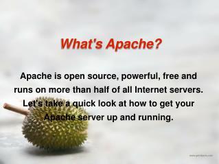 What's Apache?