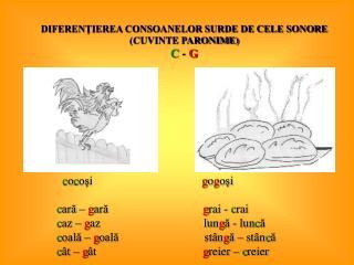 DIFERENŢIEREA CONSOANELOR SURDE DE CELE SONORE  (CUVINTE PARONIME) C  -  G