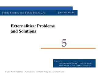 Externalities: Problems and Solutions