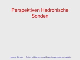 Perspektiven Hadronische Sonden